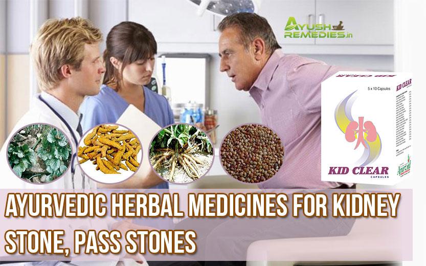 Ayurvedic Herbal Medicines for Kidney Stone