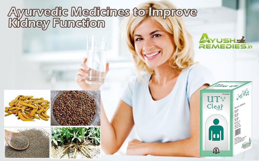 Ayurvedic Medicines To Improve Kidney Function