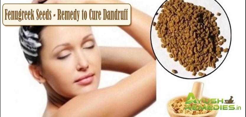 Fenugreek Seeds Remedy to Cure Dandruff