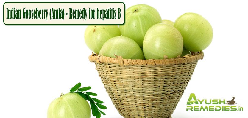 Amla Remedy for Hepatitis B