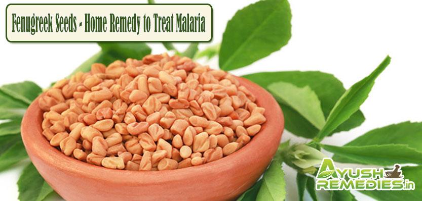 Fenugreek Seeds Home Remedy to Treat Malaria