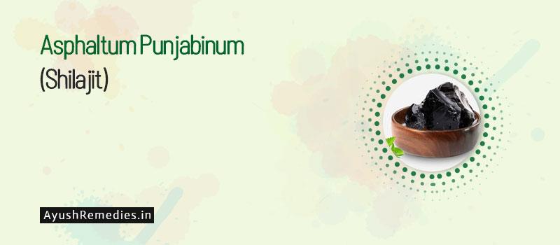 Shudh Shilajit (Asphaltum Punjabinum)